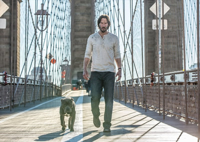 John-Wick-Chapter-2-movie-2017-image